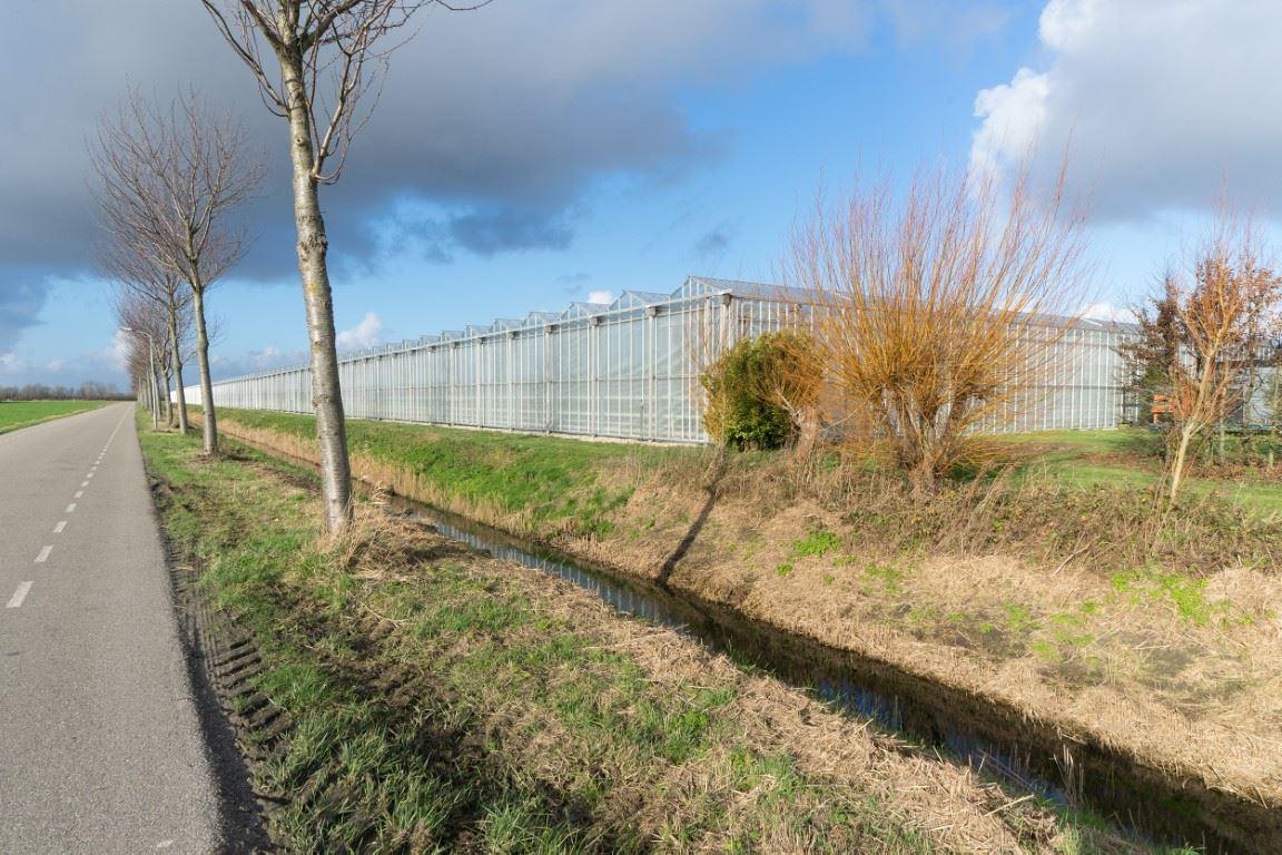 Afbeelding van Rilland -  Bathpolderweg 19
