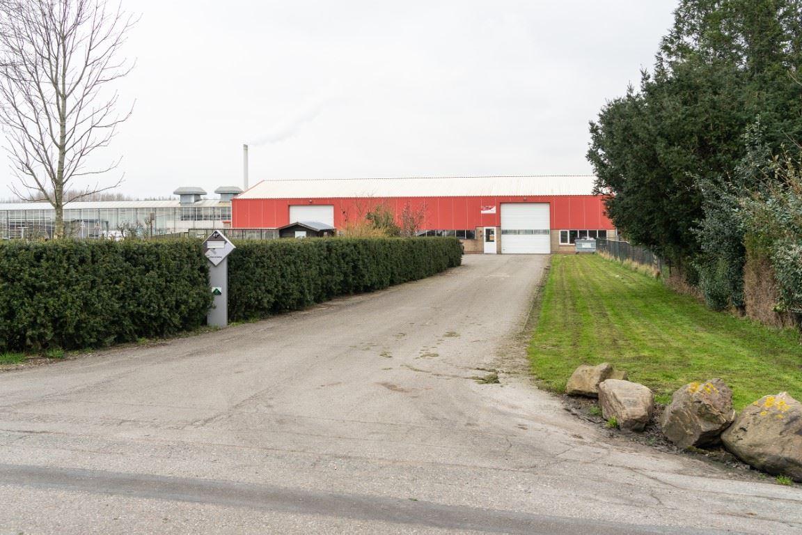 Afbeelding van Nootdorp - Langelandseweg achter 41a